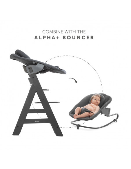 Trona bebé Hauck alpha plus select charcoal