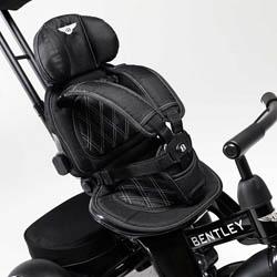 Asiento del triciclo